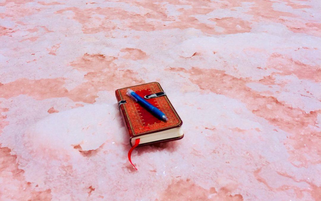 Un troisième roman en cours d'écriture…?